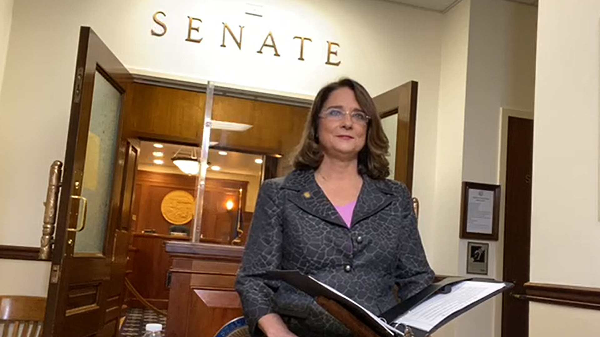 Sen. Reinbold says Gov. Dunleavy's letter aims to 'intimidate those who question him' – Alaska Watchman